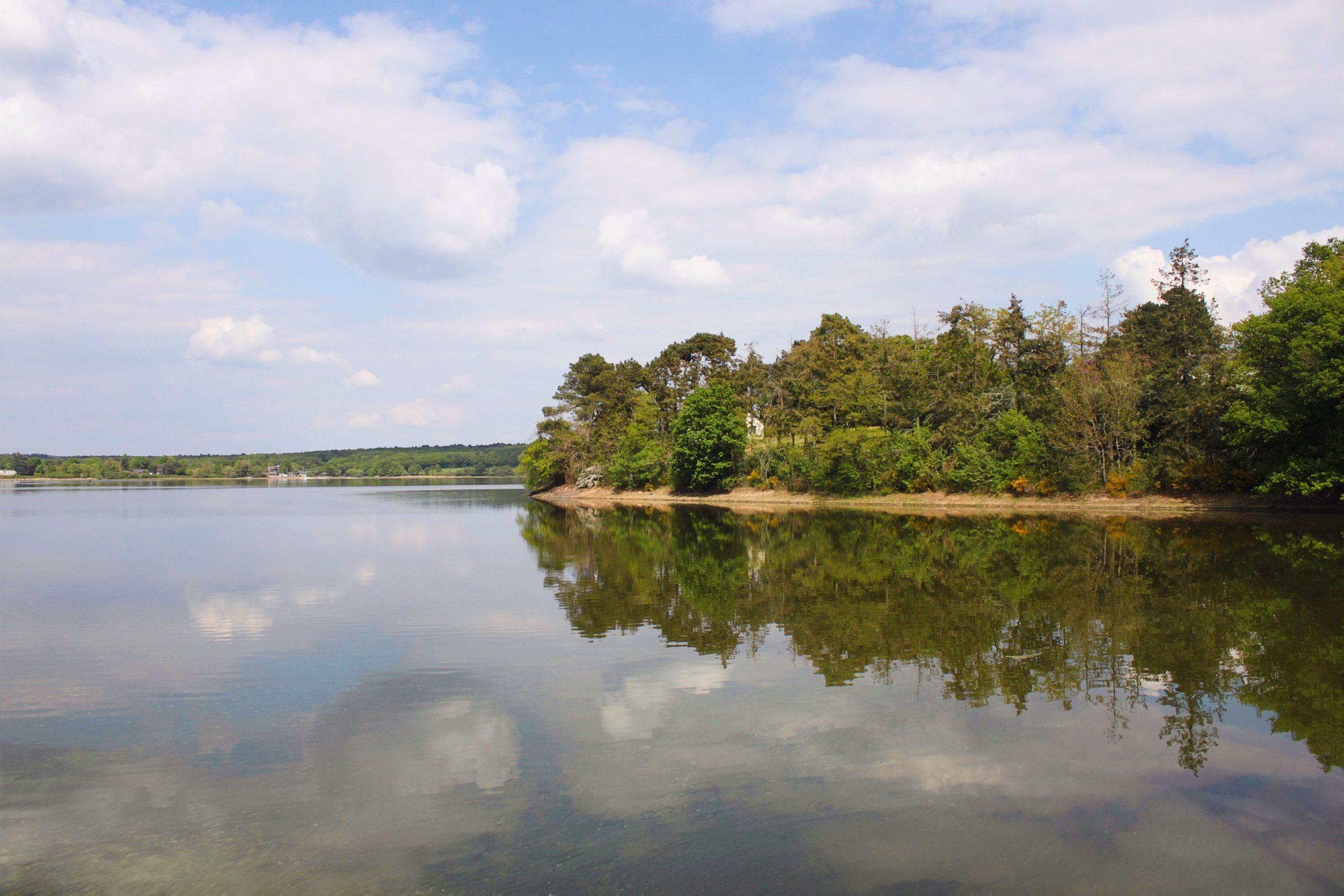 Découvrir la vallée de l'Erdre : le lac de Vioreau
